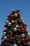 闪耀在晴朗的非洲天空下的圣诞树 免版税库存图片