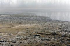 闪耀的池塘和的树的泥泞的底部在水的其余 免版税库存照片