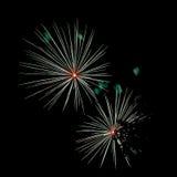 闪耀的烟花在从公园和树silhouett看的夜 图库摄影