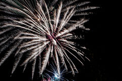 闪耀的烟花在从公园和树silhouett看的夜 免版税图库摄影