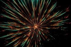 闪耀的烟花在从公园和树silhouett看的夜 库存照片