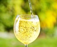 闪耀的白葡萄酒 库存照片