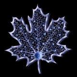 闪耀蓝色珠宝的叶子 库存照片