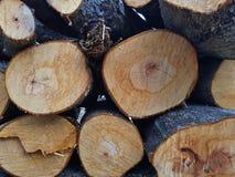 闭合的日志堆,展示木头表面 库存图片