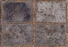 闭合的有被锯的木头的自然样式的元素木eco瓦片与年轮的在块之间 免版税库存照片