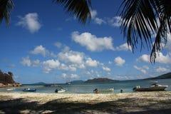 闹事 塞舌尔群岛 Curieuse海岛在印度洋 库存图片