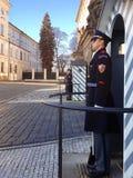 仪仗队在总统府守卫 免版税库存图片