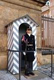 仪仗队在总统府守卫 库存照片
