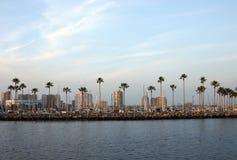 防堤和棕榈树 库存图片