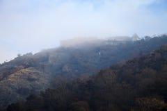 防御在雾的树木繁茂的小山 风景 库存图片