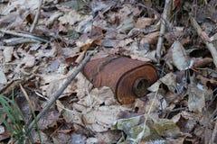 防毒面具RKKA老生锈的煤炭过滤器在下落的叶子中的森林里被投掷 免版税图库摄影