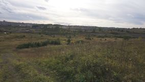 阳光一个庄严看法在植物叶子发光  在山坡的领域 自然美好的风景  股票录像