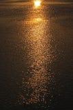 阳光反射在河 免版税库存图片