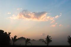 阳光和雾 免版税库存图片