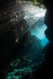 阳光和黑暗的水下的洞穴在所罗门群岛 库存图片