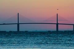 阳光在日出的Skyway桥梁与鸟 免版税库存照片