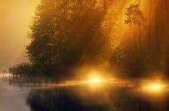 阳光在有薄雾的湖