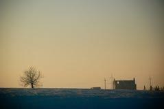 阳光房子和结构树 免版税库存照片