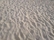 阳光海洋沙丘使特写镜头靠岸 图库摄影