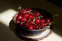 阳光温暖的樱桃 图库摄影