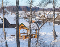 洒满阳光的橙色眺望台 在树的姜猫 免版税库存照片