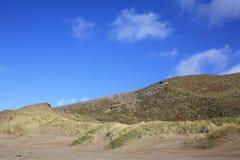 洒满阳光的沙丘 免版税库存照片