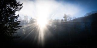 阳光通过早晨薄雾 库存图片