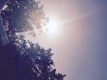阳光 库存照片