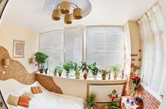 阳台卧室种植晴朗的视窗 库存照片