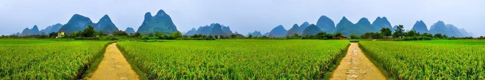 阳朔360度Parorama ricefields,石灰岩地区常见的地形山大局 免版税库存照片
