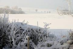 阴霾横向雪冬天 免版税库存照片