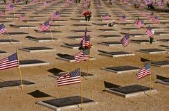 阵亡将士纪念日在沙漠 库存图片