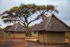 阵营在肯尼亚 库存照片