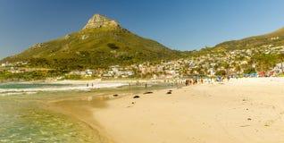 阵营海湾海滩在开普敦,南非 库存照片