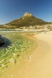 阵营海湾海滩在开普敦,南非 免版税库存图片
