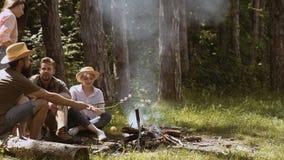 阵营火在夏天 人临近阵营火 一次野营的朋友 做营火的小组朋友 股票视频