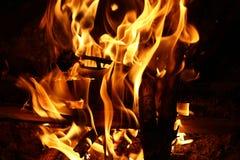 阵营火- fie和火焰 免版税库存照片