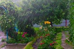 阵雨 免版税库存图片