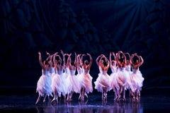 阶段的芭蕾舞女演员 免版税图库摄影