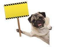 阻止空白的长方形黄色警报信号的微笑的哈巴狗小狗 库存照片