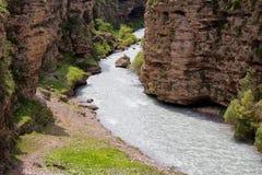 阿克苏河峡谷 免版税库存图片