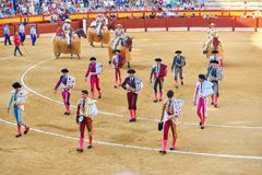 阿利坎特/西班牙- 08 03 2018年:代表在争斗前的年轻斗牛士用公牛 免版税库存照片
