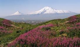 阿勒山亚美尼亚日山夏天视图 库存图片