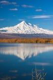 阿勒山登上在湖反射了 免版税图库摄影