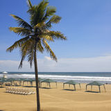 阿卡普尔科海滩-墨西哥 免版税库存照片
