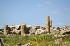 阿哥里根托-意大利017的寺庙的谷 库存图片