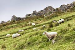阿基尔岛的被放弃的村庄 免版税库存照片