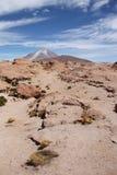 阿塔卡马向有Ollague火山的,玻利维亚沙漠扔石头 库存照片