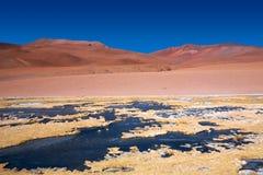 阿塔卡马沙漠冻结的盐水湖 库存照片