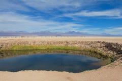 阿塔卡马沙漠小圆的湖 免版税库存照片